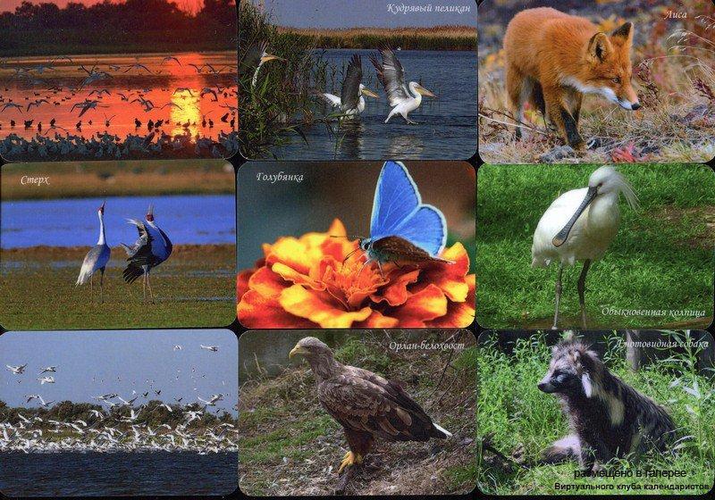Серия календарей «Астраханский заповедник фауна» 16 штук 2016 год