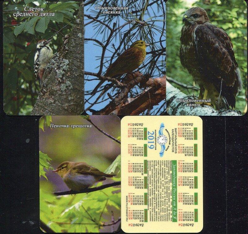 Серия календарей «Заповедник Белогорье фауна» 22 штуки 2019 год