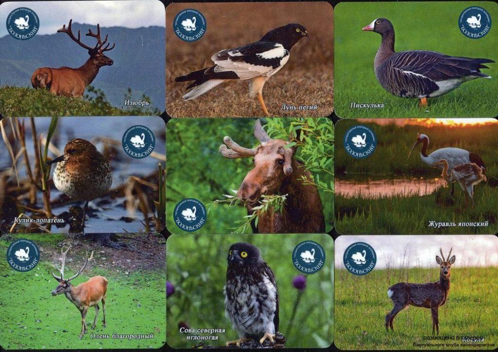 Серия календарей «Заповедник Болоньский фауна» 22 штуки 2019 год