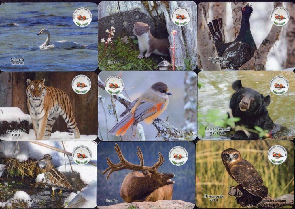 Серия календарей «Заповедник Ботчинский фауна» 20 штук 2019 год