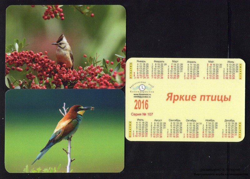 Серия календарей «Яркие птицы» 20 штук 2016 год