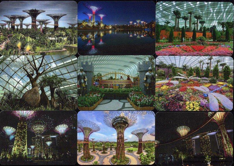 Серия календарей «Сады в заливе» 12 штук 2016 год