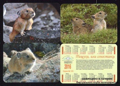 Серия календарей «Пищухи и сеноставки » 12 штук 2016 год