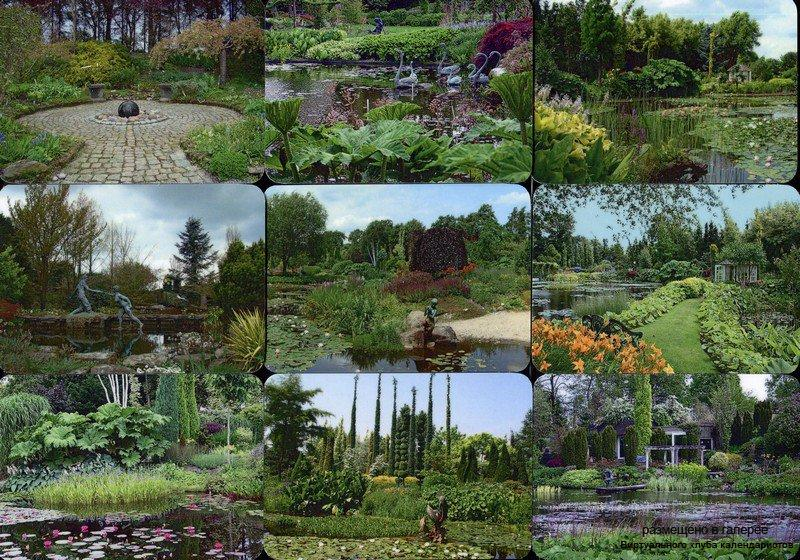 Серия календарей «Ботанический сал Ады Хофман» 16 штук 2017 год