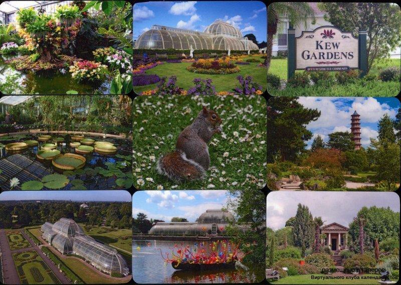 Серия календарей «Королевские ботанические сады Кью-Гарденс» 12 штук 2018 год