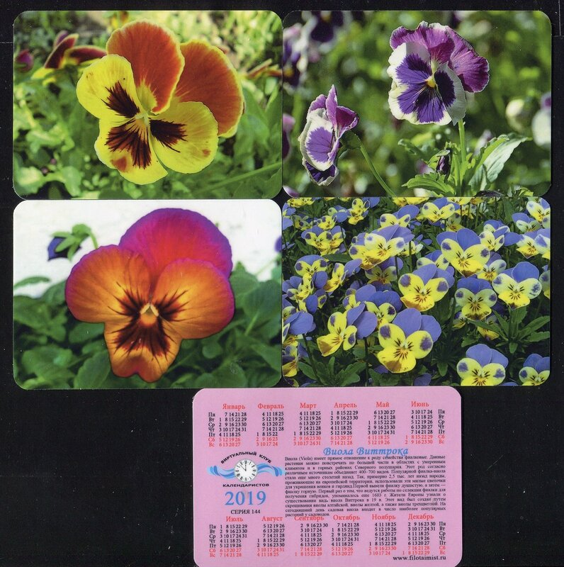Серия календарей «Виола Виттрока» 22 штуки 2019 год