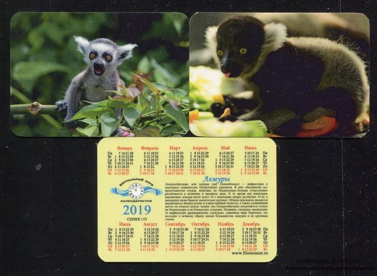 Серия календарей «Животные: лемуры» 20 штук 2019 год