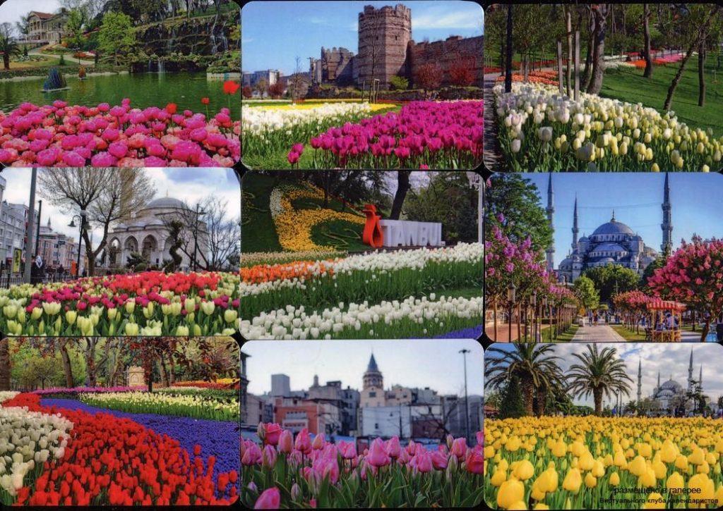 Серия календарей «Весенний стамбул» 22 штуки 2020 год