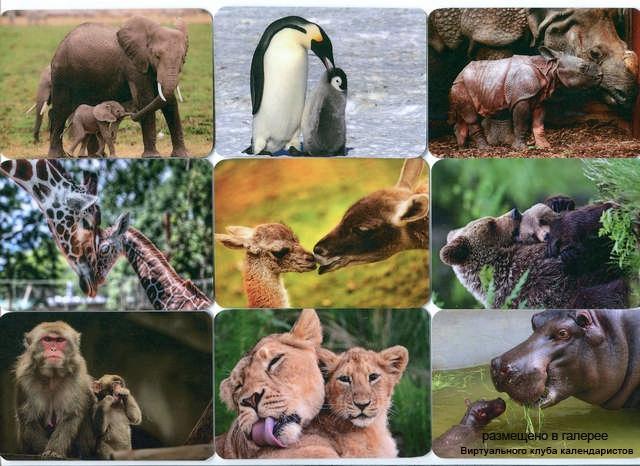 Серия календарей «Мать и дитя» 18 штук 2013 год