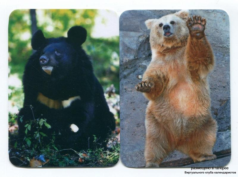 Серия календарей «Медведи» 18 штук 2013 год