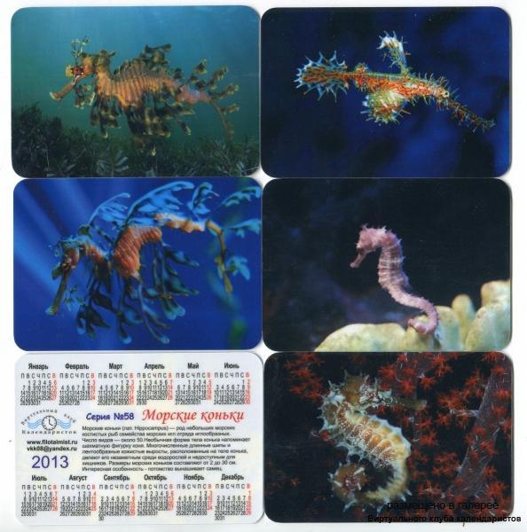 Серия календарей «Морские коньки» 14 штук 2013 год