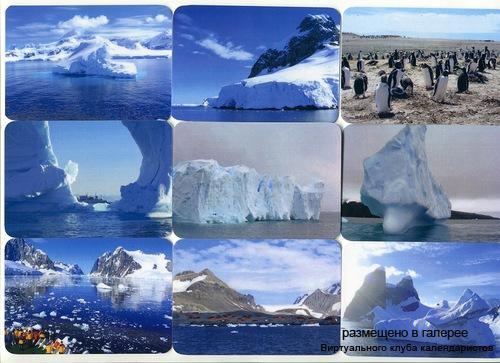 Серия календарей «Антарктида» 12 штук 2013 год