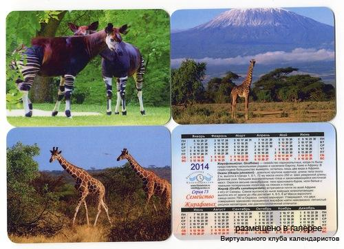 Серия календарей «Жирафы» 12 штук 2014 год