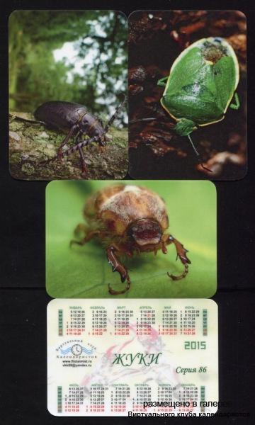 Серия календарей «Жуки» 12 штук 2015 год