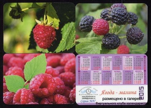 Серия календарей «Малина» 12 штук 2015 год