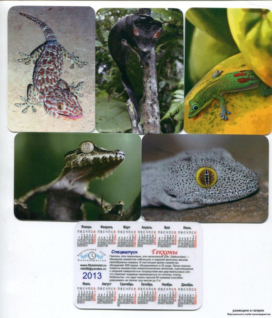 Серия календарей «Гекконы» 14 штук 2013 год