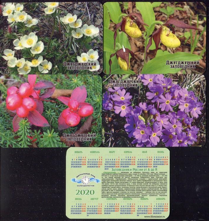 Серия календарей «Джугджурский заповедник флора» 22 штуки 2020 год