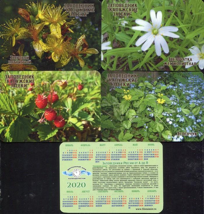 Серия календарей «Калужские засеки флора» 22 штуки 2020 год